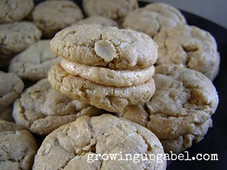 Peanut Butter Sandwich Cookies from Growing Up Gabel @thegabels #recipe