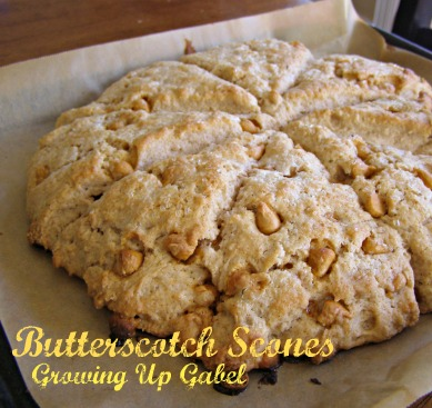 Butterscotch Scones at Growing Up Gabel