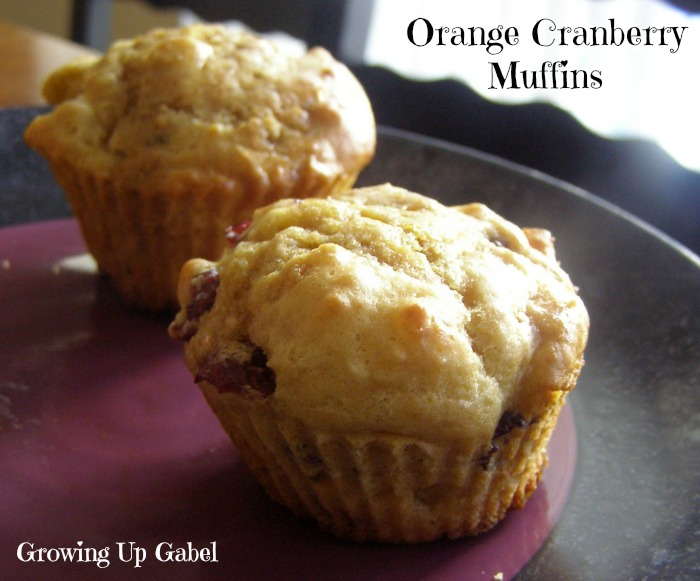 Orange Cranberry Muffins - Growing Up Gabel