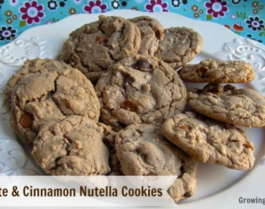 Chocolate and Cinnamon Nutella Cookies