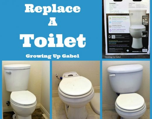 How to Replace a Toilet: DIY Master Bathroom Remodel