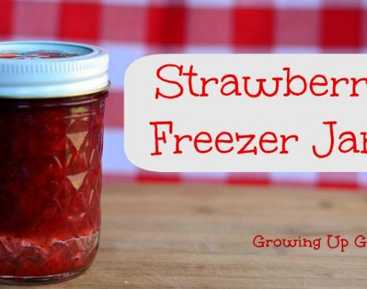 Freezer Strawberry Jam