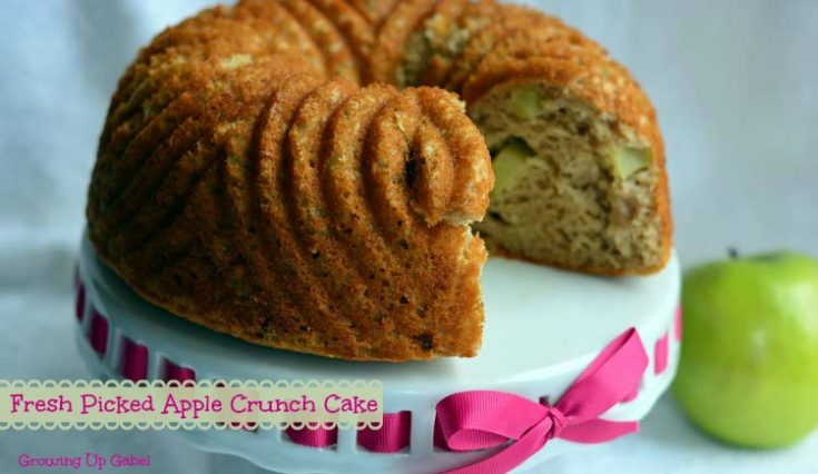 Fresh Picked Apple Crunch Cake