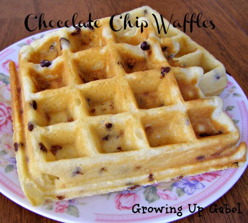 Chocolate Chip Waffles ~ Growing Up Gabel