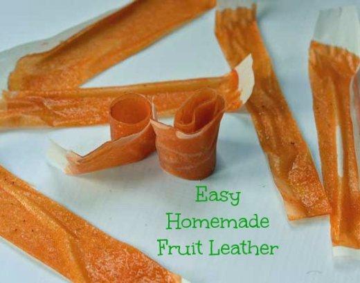 Easy Homemade Fruit Leather with Mott's Snack & Go