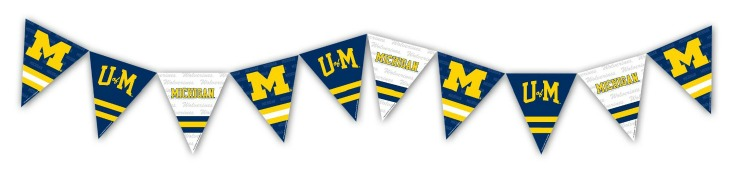 Michigan banner