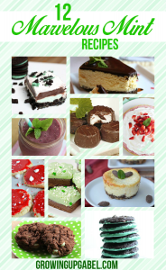 Make a fun new dessert with these delicious mint dessert recipes!