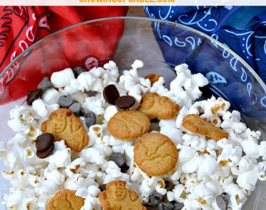 S'mores Easy Snack Mix Recipe