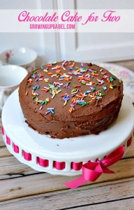 Easy Chocolate Cake for Two