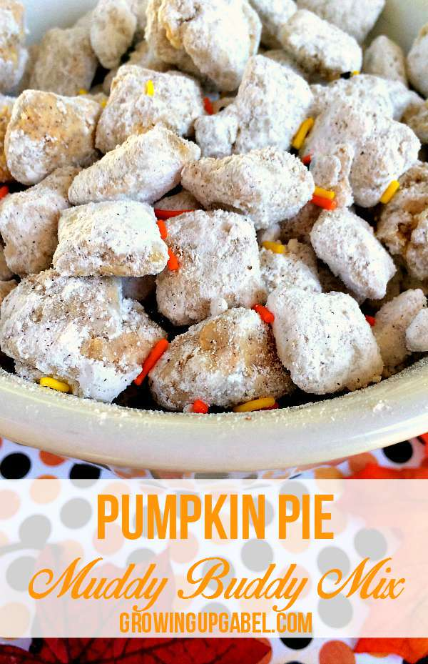 Mix it up this fall with a pumpkin flavored Chex puppy chow mix! Just 5 simple ingredients plus about 15 minutes are all you need for this delicious pumpkin recipe everyone will love.