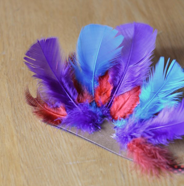 Craft Feathers for Turkey Craft