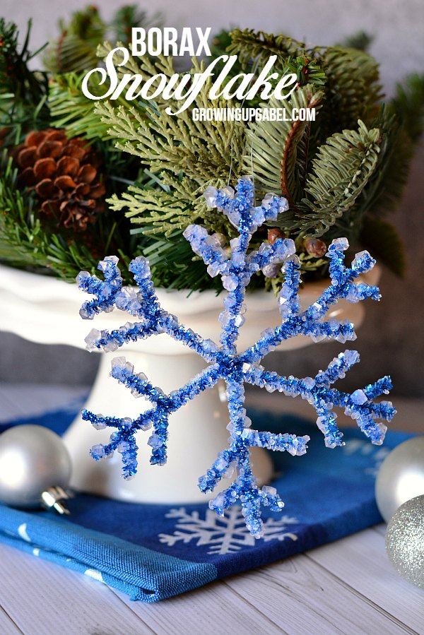 Borax Snowflake Crafts for Kids
