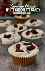 Orange Cranberry White Chocolate Candy Recipe
