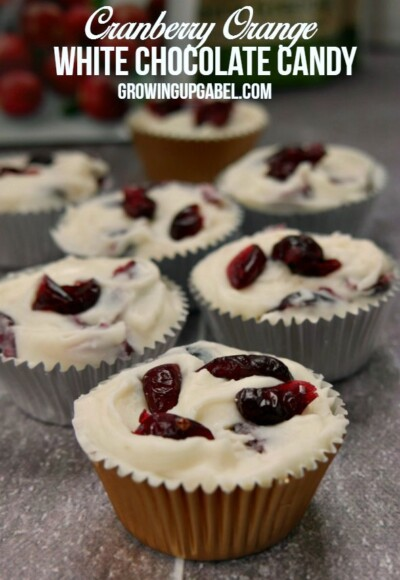 This easy candy recipe is ready in a few minutes! White chocolate chips, dried cranberries and orange combine for an out of this world white chocolate candy!