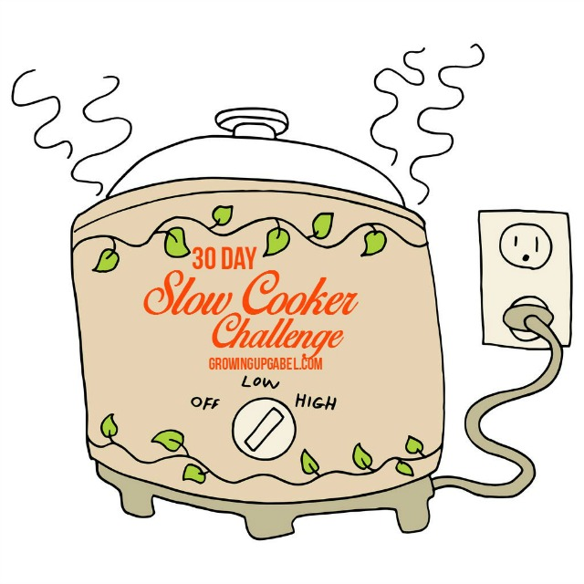 Slow cooker challenge small