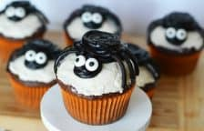 Cute and easy spider cupcakes are fun to make for Halloween. Use homemade or store bought cupcakes, black licorice, and frosting to make treats for parties or just fun!
