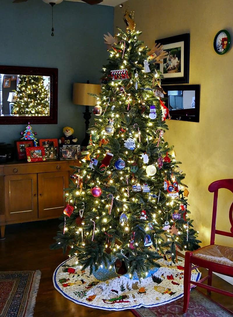 a-family-christmas-tree