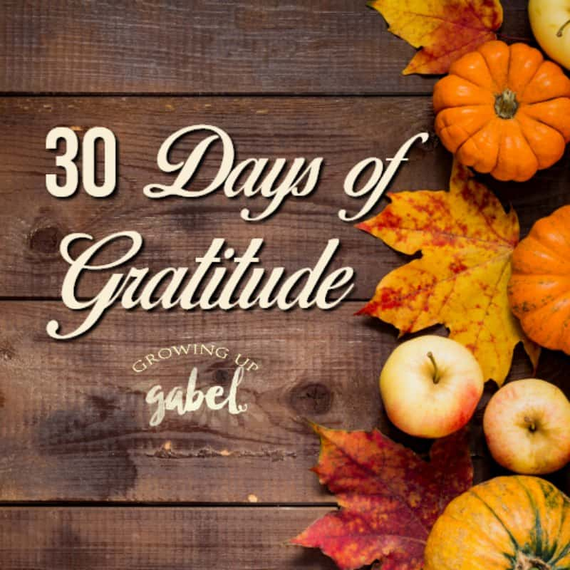 30 days of gratitude on wood table with fall leaves and pumpkins and apples