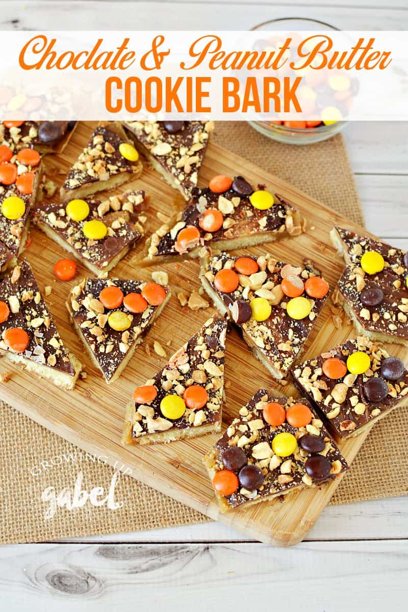 Simple chocolate peanut butter bark on top of caramel and shortbread cookies is topped with peanut butter candies and peanuts! CLICK to get this amazing cookie bark recipe!