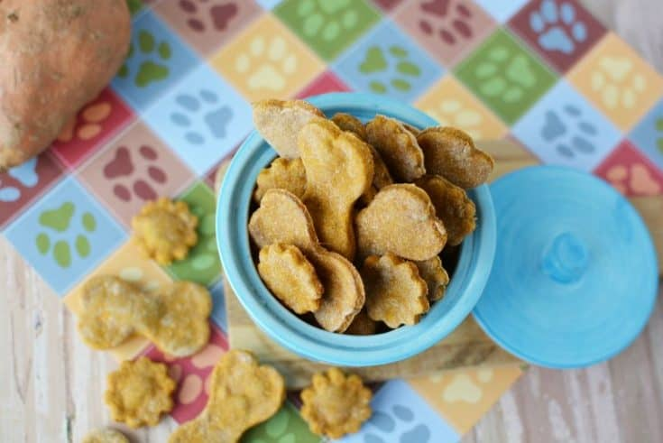 4 Ingredient Sweet Potato Dog Treats