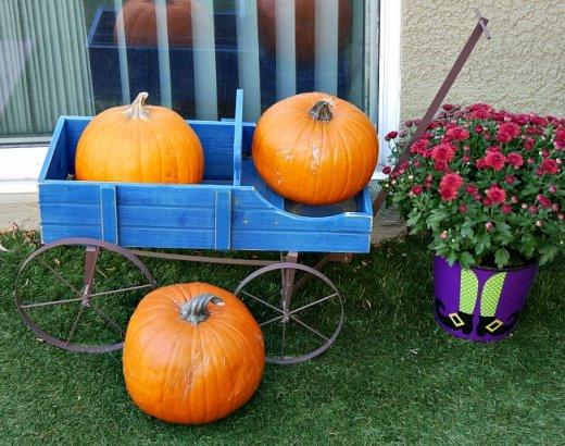Easy Small Backyard Ideas for Halloween